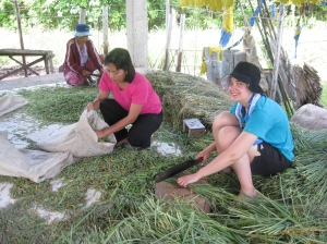 Chopping Lemon Grass for the Mambugsay Distiller